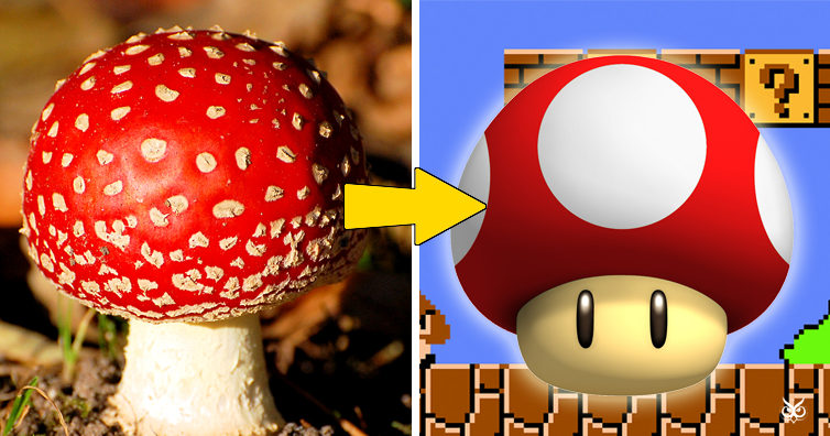 There S A Reason Nintendo Chose This Specific Mushroom To Be